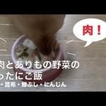 あるもので犬のご飯:豚肉とありもの野菜のごった煮