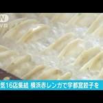 横浜・赤レンガ倉庫で「宇都宮餃子祭り」人気店集結(18/04/21)