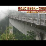橋に靴そろえ・・・自殺見せかけ「騒ぎでストレス発散」(18/05/08)