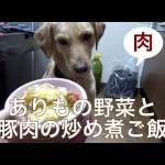 犬の手作りご飯:ありもの野菜と豚肉の煮込み